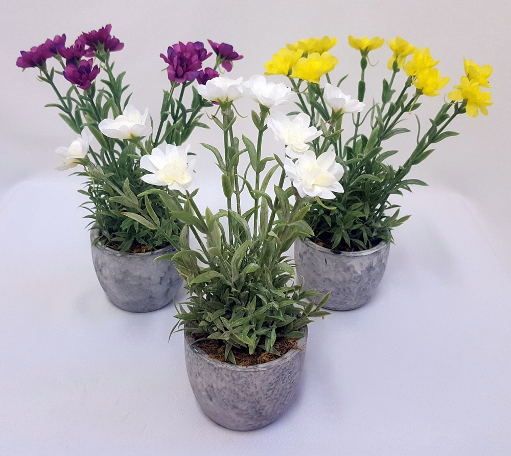 Spring flowers in pot 3 cols ass florelle sku fl13190 categories potted spring mightylinksfo